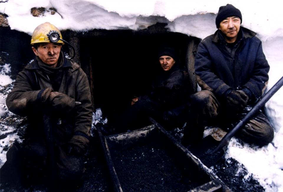 Minero en la ratonera nevada