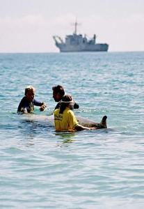 Voluntarios ayudan a un zifio en Canarias durante las maniobras Neo Tapón en 2002