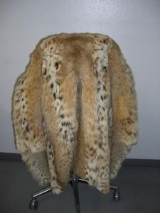 Un abrigo de lince europeo confiscado a militares de EEUU en Afganistán.