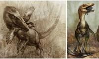 Sinocalliopteryx gigas cazando