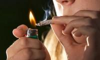 El cannabis es la droga ilegal más consumida del mundo.