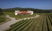 Instalaciones de las bodegas Terras Gauda en el valle de O Rosal (Pontevedra)