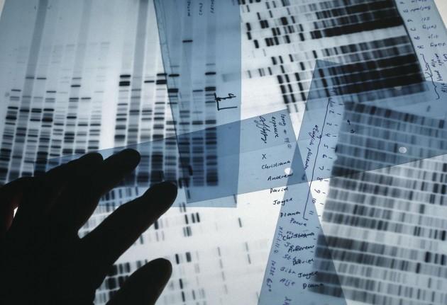 El estudio ha sido realizado por más de 30 centros de cinco países.
