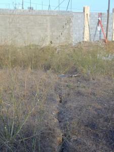 Grietas en el suelo y en un muro en el polígono de Lo Tacón