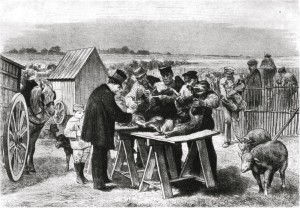 Pasteur en Pouilly-le-Fort en 1881, según una ilustración de la época