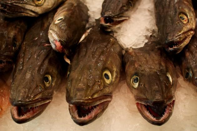 España es el primer país productor de merluza de la UE