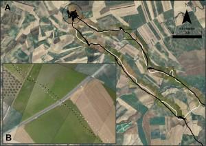 Ruta del drone (blanco) y del cernícalo (negro), sobre fotos tomadas por el avión