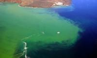 Buque oceanográfico