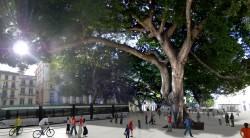 Recreación artística del tranvía de Málaga en la que se ha obviado la catenaria