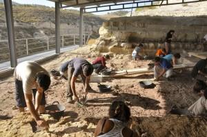 El yacimiento de Barranco León, en Orce, en el que ha aparecido la muela de leche