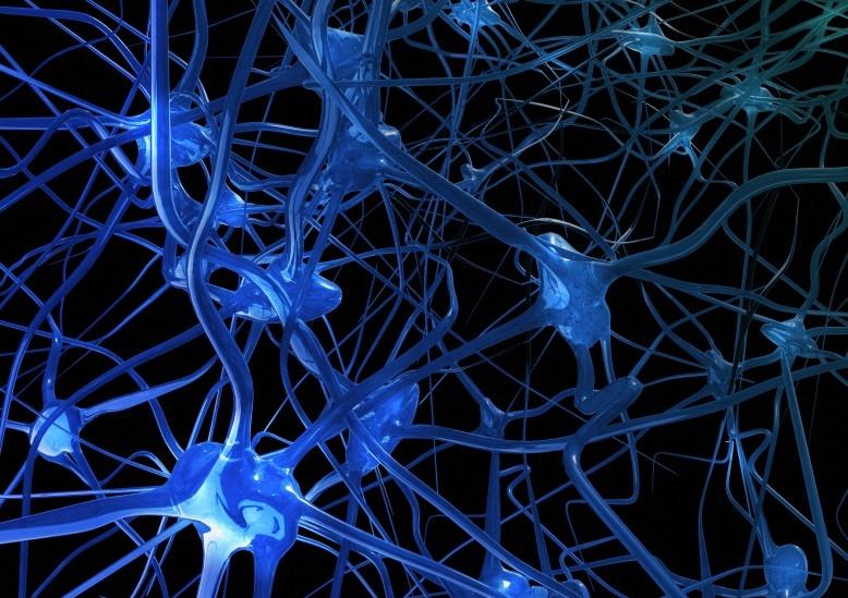 Circuito Neuronal : Europa y eeuu lanzan una colosal carrera para apoderarse