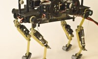 El robot-gato diseñado por investigadores franceses.