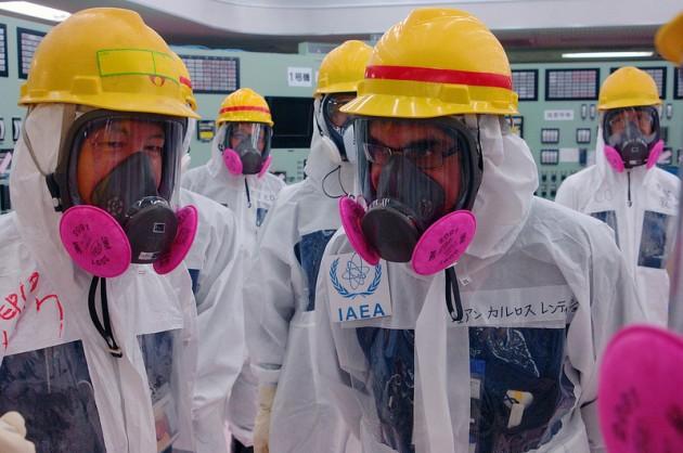 Lentijo en Fukushima