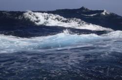 Acidificación oceánica