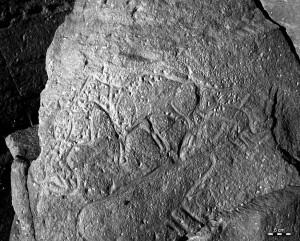 Grabado en la roca en Messak (Libia), ejecutado hace unos 6.000 años