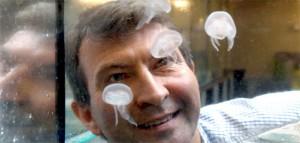 El investigador Paul Gatenholm