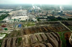 Fábrica de papel de APP en la región de Riau, con miles de troncos apilados