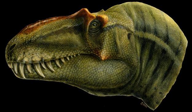 Representación artística de la nueva especie de tiranosaurio Lythronax anunciado por los paleontólogos del Museo de Historia Natural de Utah.