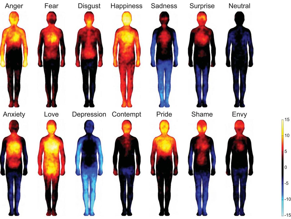 El amor, el miedo o la ira crean reacciones físicas en partes diferentes del cuerpo