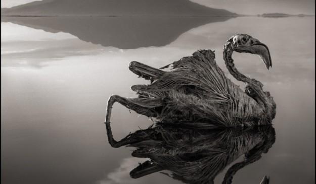 El lago Natron, en Tanzania