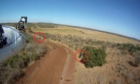 Cazadores furtivos detectados por un drone en Zululandia