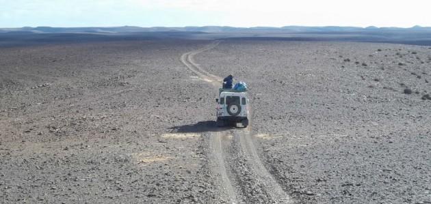 Biólogos españoles escrutan el horizonte en los montes Aydar (Sahara Occidental)