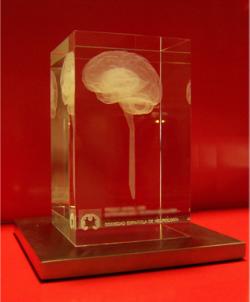 El premio SEN2013.