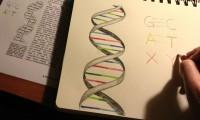 Las dos nuevas letras de ADN artificial