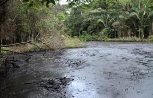 Uno de los puntos de la Amazonia peruana estudiados por la UAB