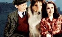 Fotograma de 'Lassie, vuelve a casa' (1943), con una joven Liz Taylor