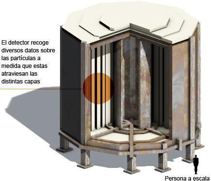 Observador de neutrinos